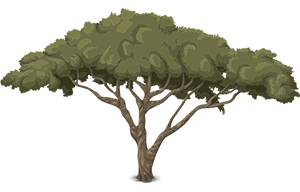 smalltree-576827_1280.png