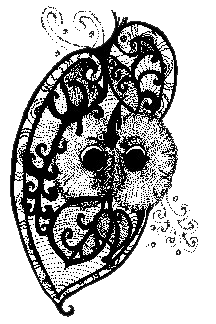 owl_.png